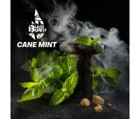 Табак Black Burn Cane Mint (Перечная Мята) 100 грамм