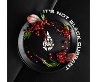 Табак Black Burn It's not black currant (Красная смородина) 100 грамм