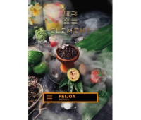 Табак для кальяна Element Earth Feijoa (Фейхоа, 100 г)