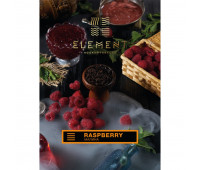 Табак для кальяна Element Earth Raspberry (Малина, 100 г)